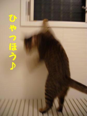 091009.jpg