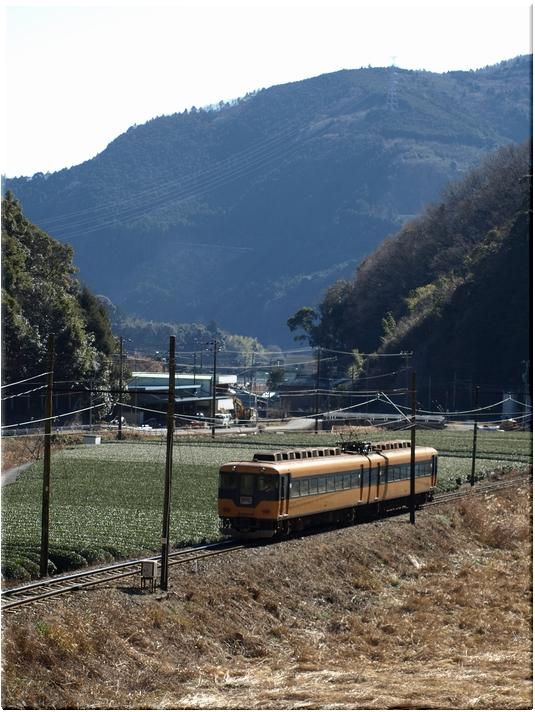 大井町線・福用お立ち台