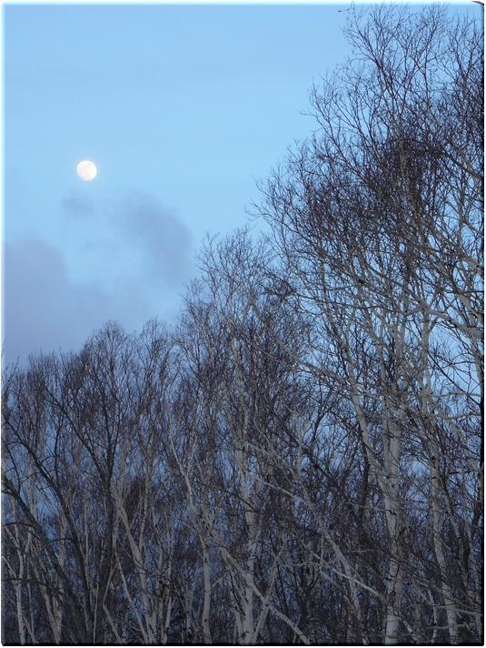 月がまた綺麗で…