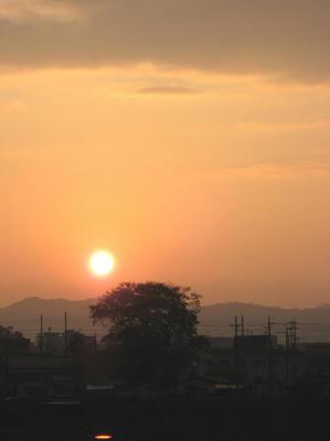 sunriser.jpg