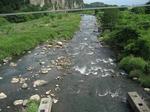 駒井橋下流