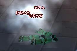 meisouki_422_Tam-03.JPG