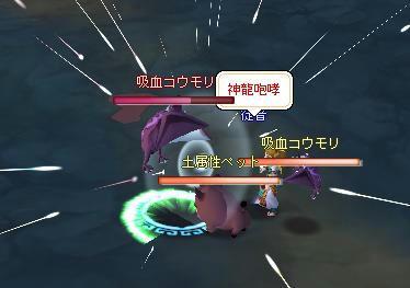 meisouki_494_SuperComboC-1.JPG