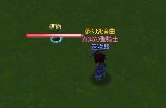 meisouki_532_Plant.JPG