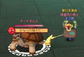 meisouki_903_Doototals.JPG