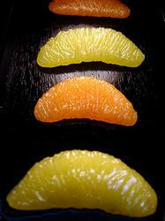 シトラスフルーツ
