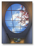 skyfactory01
