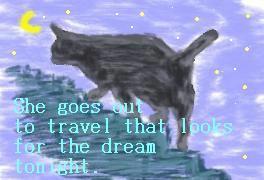 夢追いネコ