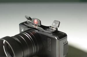 IMGP5079.jpg