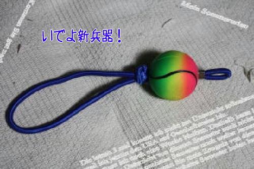 f6b50743.jpg