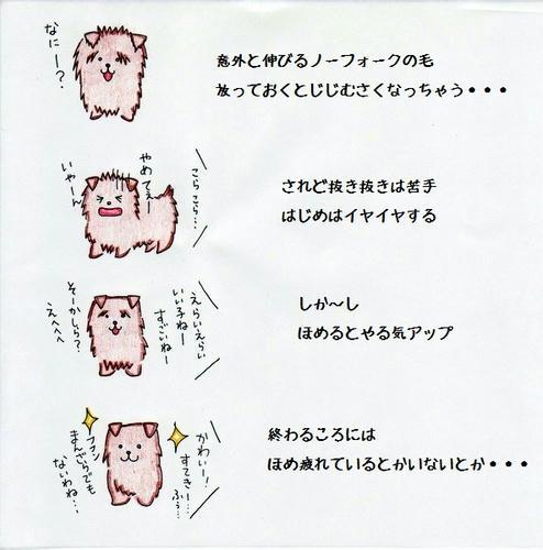 image-18.jpg