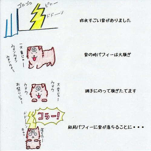 image-25.jpg