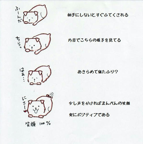 image-30.jpg
