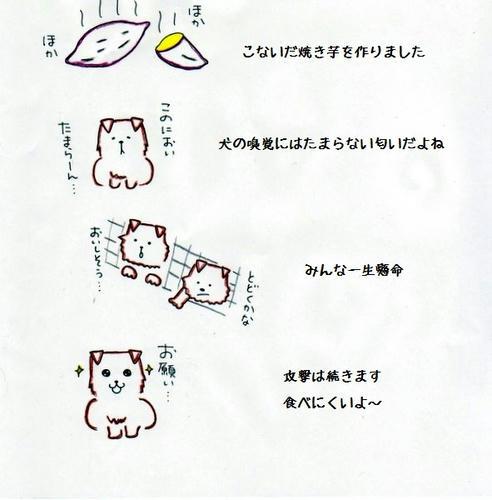 image-31.jpg