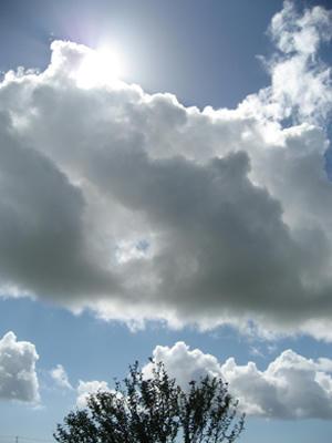 モバリー夏の空