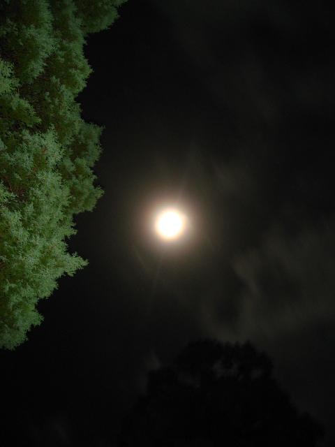 台風の後の満月
