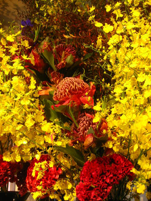 ロビーのお花たち