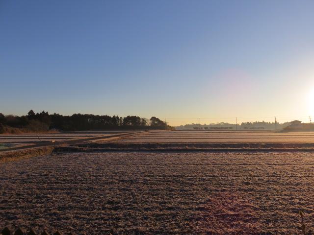 寒い日の朝