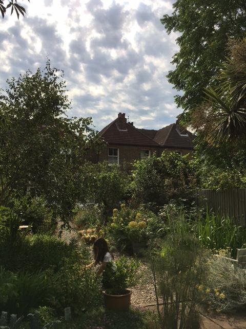 お宿のお庭