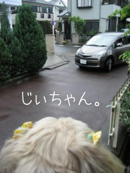 IMG_0995_1.JPG