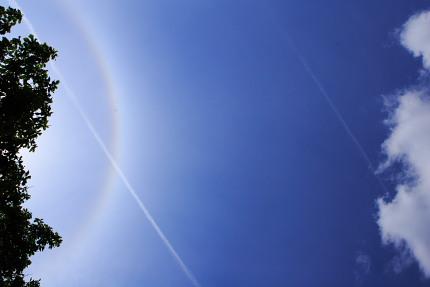 丸虹と、飛行機雲。