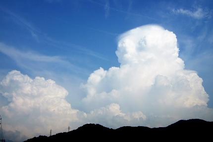 去年の夏雲は8月11日。(去年のブログより) 今年は早く現れたのですなぁ。
