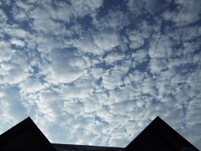 いわし雲ともいいますね。