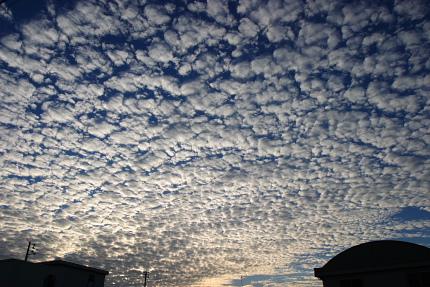 2007/11/29 見事なウロコ雲が広がった山形市内。