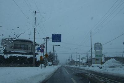 道に雪はありませんが雪は降ってます。