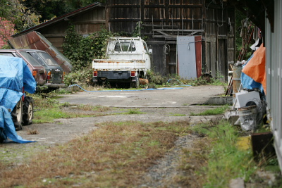 サンバートラックやトラクターなどが並べられている。