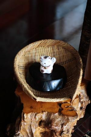招き猫ちゃんが。