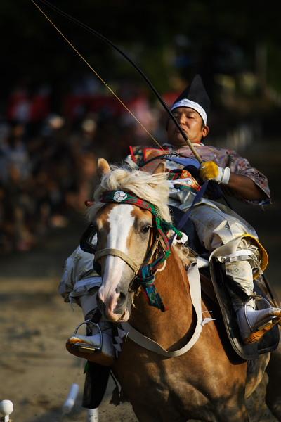 カ「くんな、くんな!!」  おいおい、馬が楽しんでいるよ。絶対。