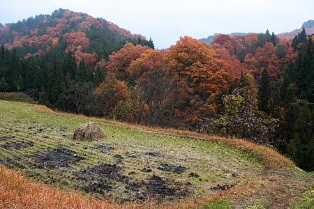 大江町小釿地区の紅葉