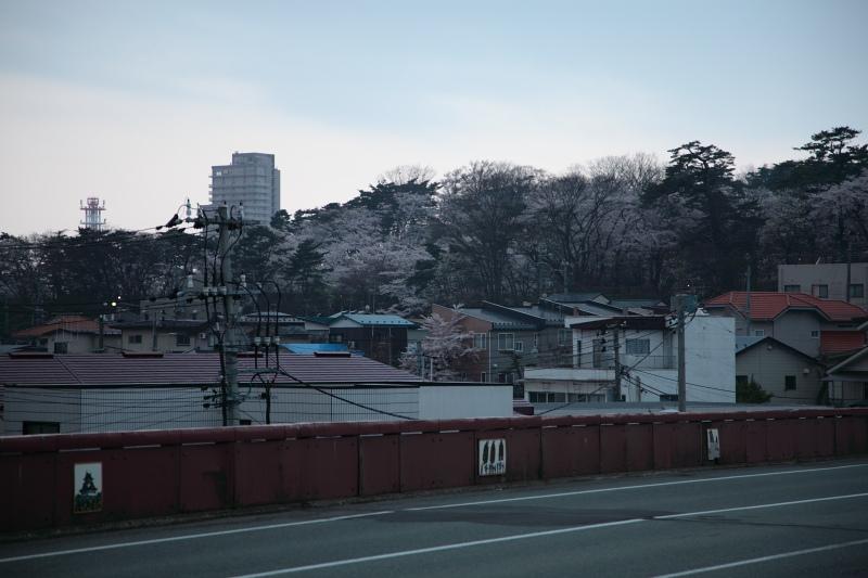 朝ぼらけ 千秋公園