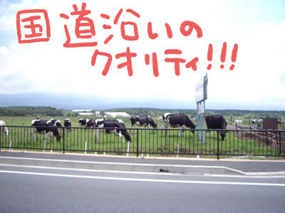 sizu004.jpg