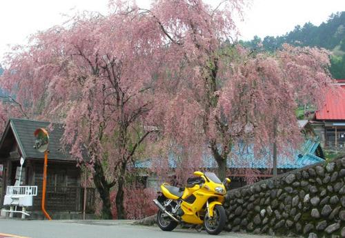 tenkunoyu04.jpg