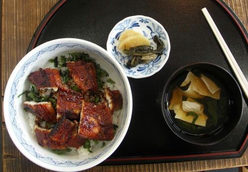 kazu_nikko09.jpg