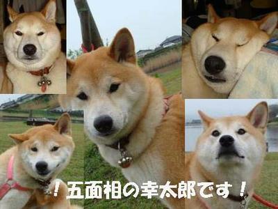 いろんな表情の幸太郎です!