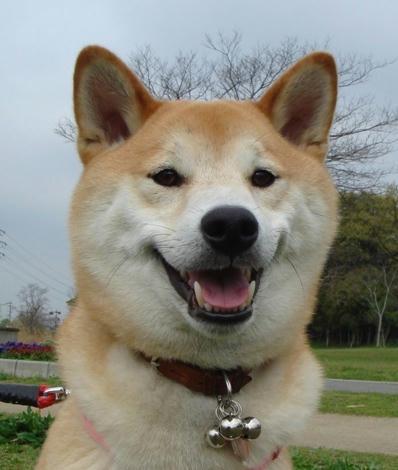 僕、幸太郎です!