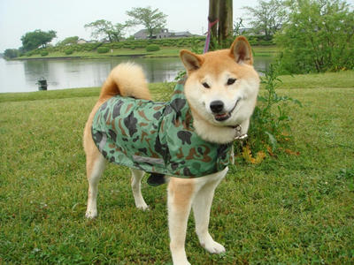 コートを着ている幸太郎です!