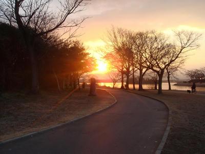 江津湖の朝!