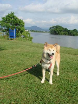 飯田山と江津湖と幸太郎!