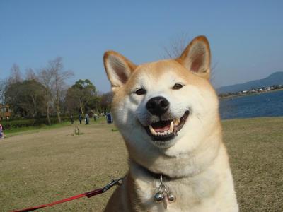 笑顔も天気もサイコー!