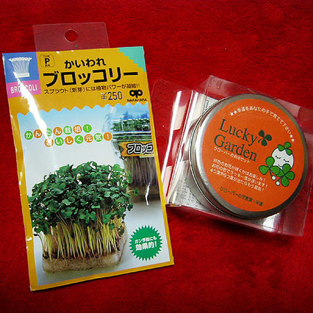 ブロッコリーとクローバーの種