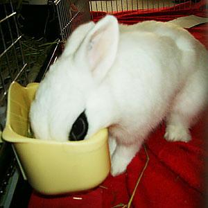 なに食べてんの?