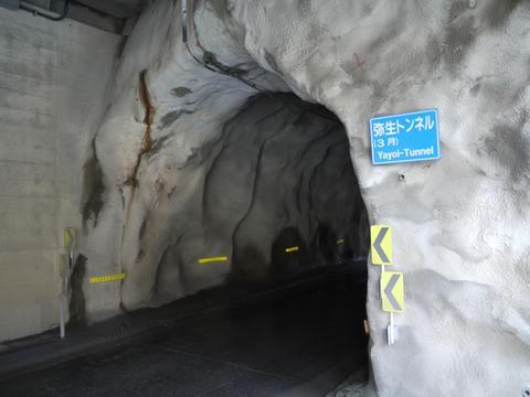 20100312-07.jpg