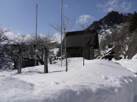 20100316-15.jpg