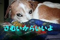 IMG_8059.jpg