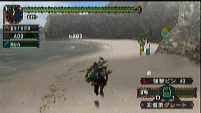 amarec20100817-013019.jpg