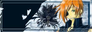banner-Ravis.jpg